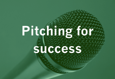 Webinar : Pitching for success